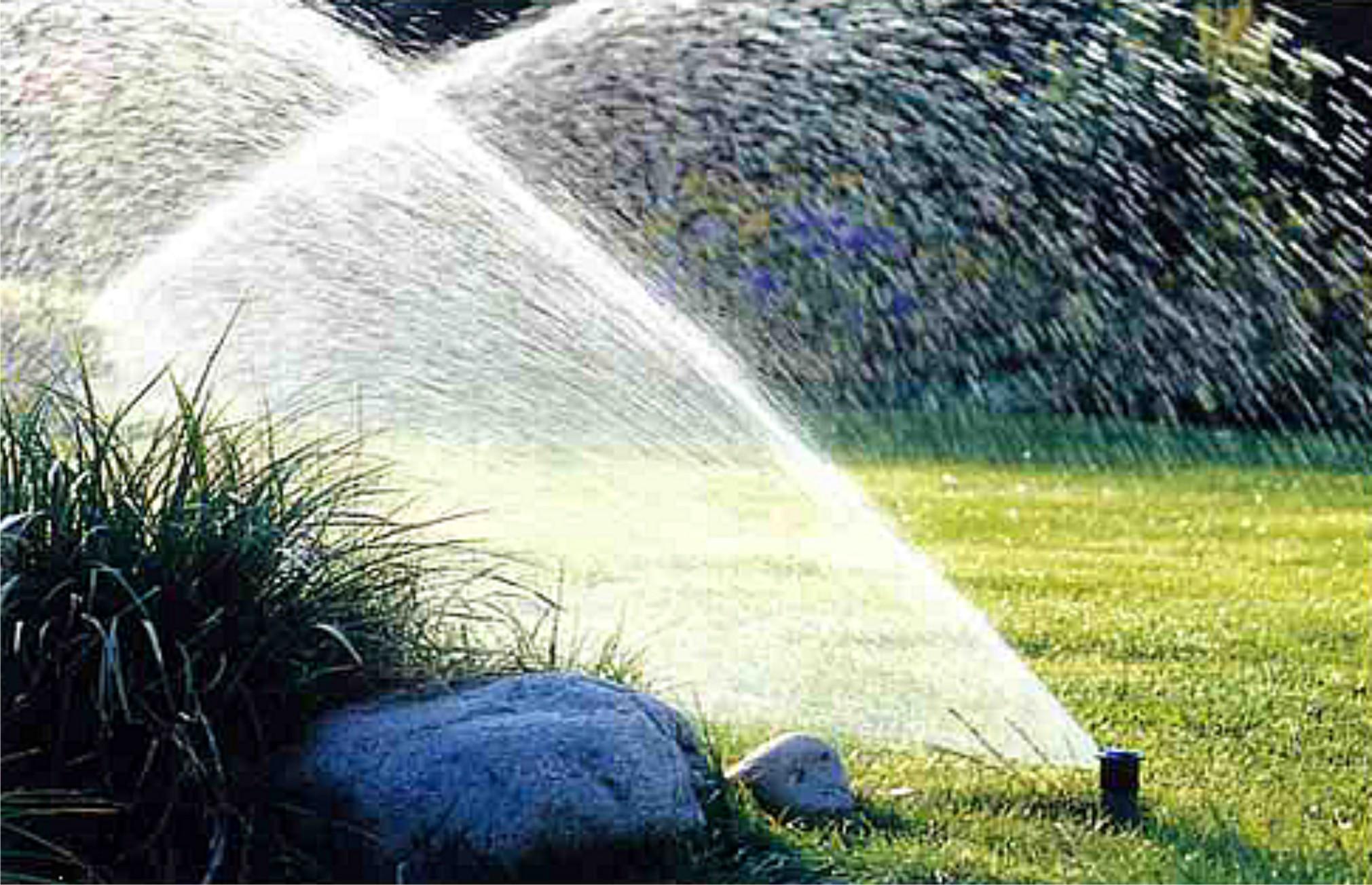 устройство для капельного полива комнатных растений