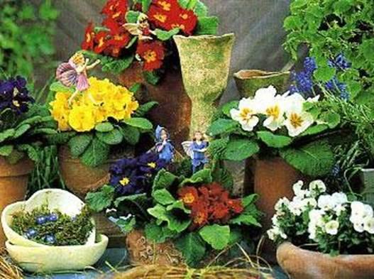 борьба с вредителями в почве комнатные растения фото
